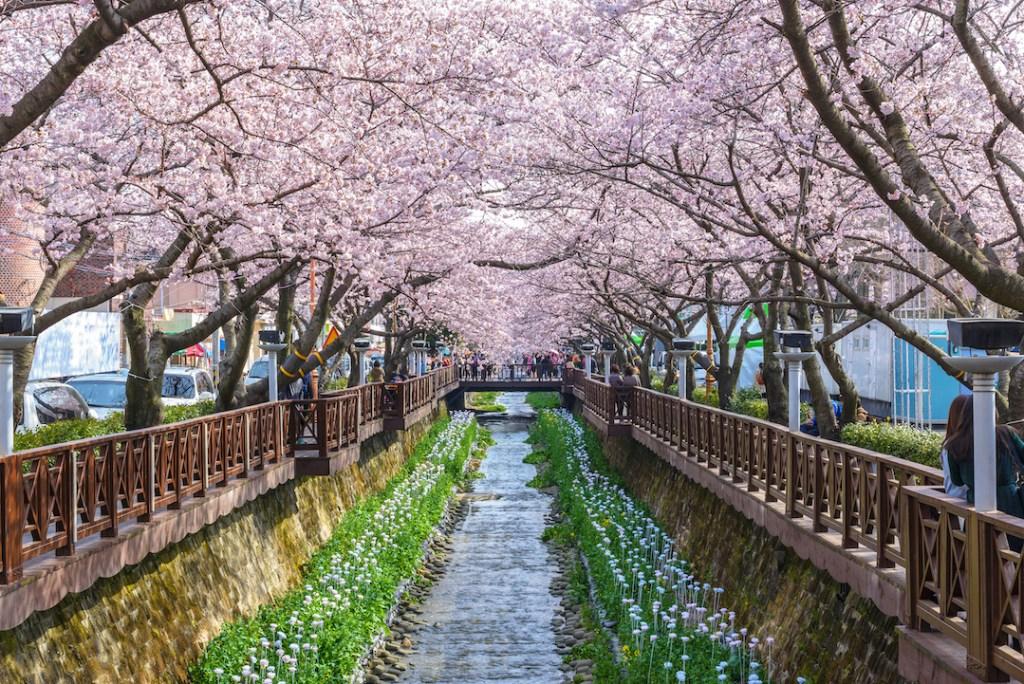 """12 สถานที่ท่องเที่ยวยอดฮิตใน """"เกาหลี"""""""